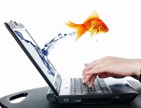 <strong>Как решить 3 ГЛОБАЛЬНЫЕ проблемы, которые препятствуют развитию МЛМ в интернет?</strong>